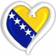 Eurovision Song Contest 2009 – Bosnia & Herzegovina